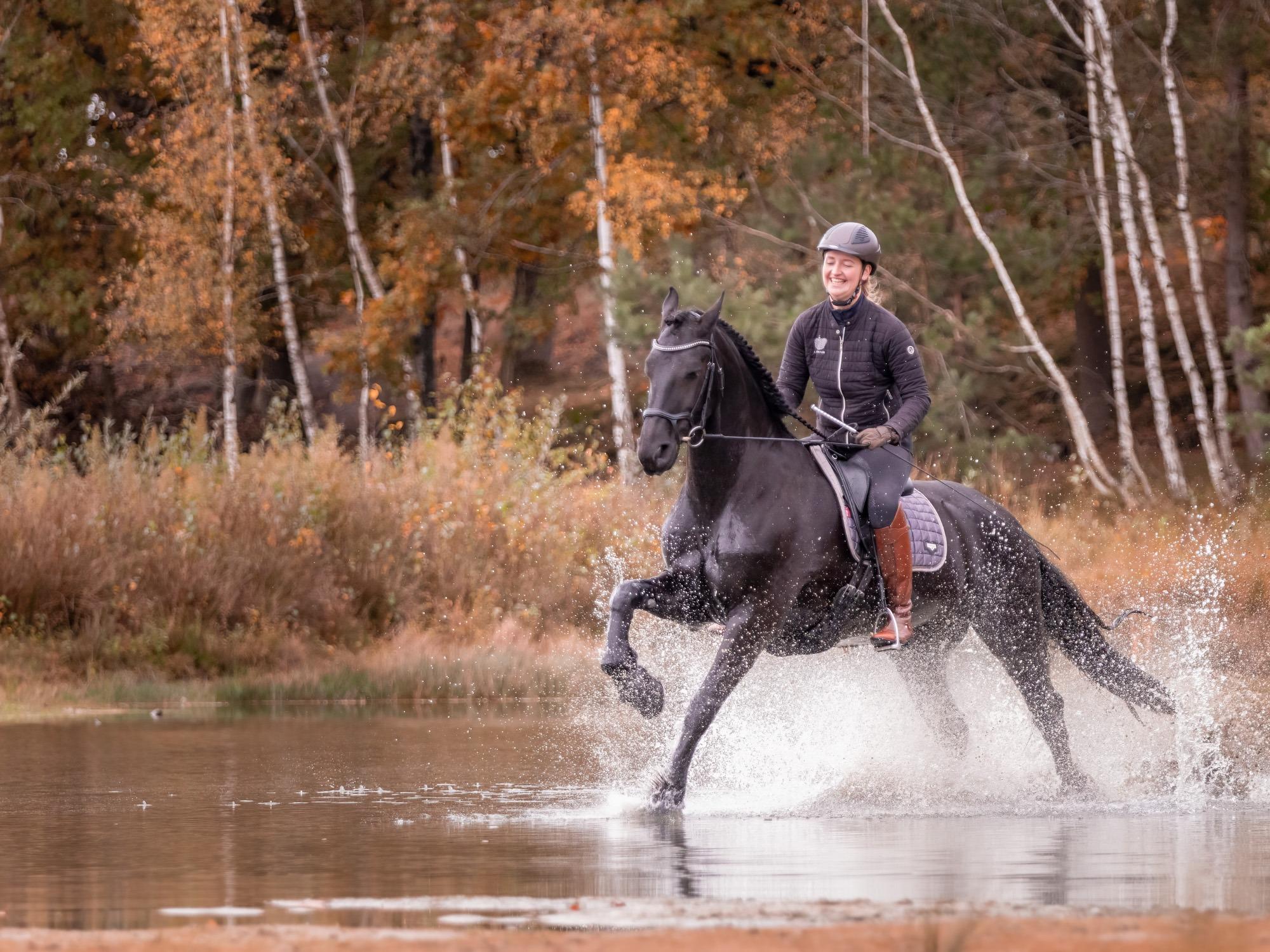 paardenfotograaf arnhem